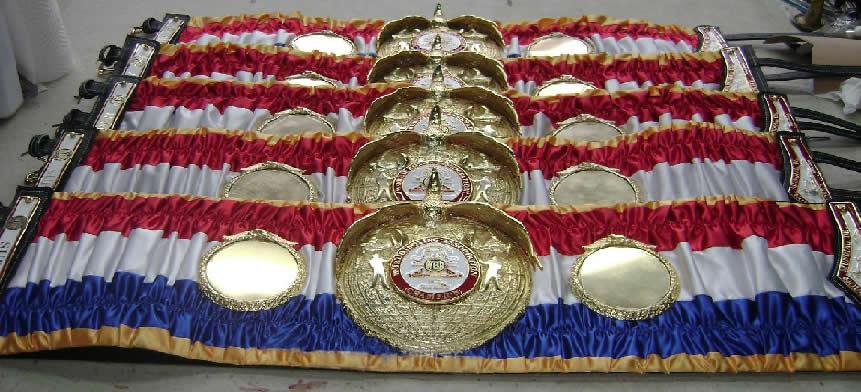 www.Boxing-Belts.de - ...
